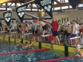 Internationales Swim Meeting in Erlangen